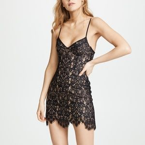NWT For Love and Lemons - Black Lace Vika Dress- S